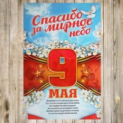 Плакат 9 мая Спасибо за мирное небо 40х60см