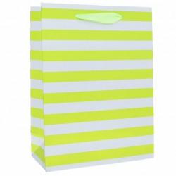 Пакет ламинированный полоски 18 х 24 х 8,5 см, зеленый 2511633