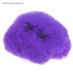 Прикол Паутина 2 паука фиолетовый 16х20см