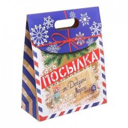 Пакет Посылка от Деда Мороза 16см