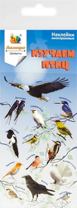 Наклейка дек леденц 2 Птицы 1 70х160