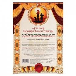 Сертификат на один метр государственной границы А4