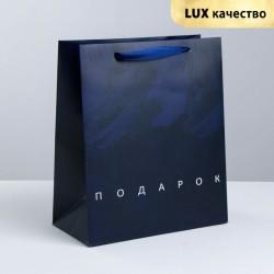 Пакет ламинированный вертикальный «Подарок», ML 23 × 27 × 11.5 см 3747915