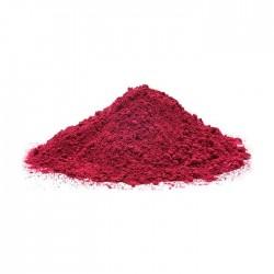 Краска холи, фестивальная, цвет красный (100 гр) 2704154
