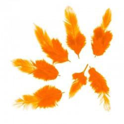 Перья Оранжевые, 50 шт.
