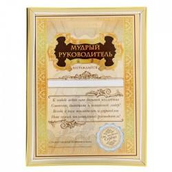 """Диплом """"Мудрый руководитель"""", 15 х 20 см 1126589"""