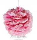 Шар одинарный пион розовый 20см